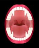 Fangs Vampire Teeth Royalty Free Stock Photography