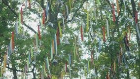 Fanions accrochant sur la ligne parmi des branches d'arbre banque de vidéos