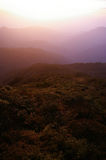 Fanjingshan Mountains in the morning fog Royalty Free Stock Images
