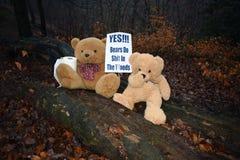Fanno gli orsi cacati nel legno Fotografie Stock