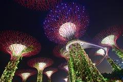 Fanno il giardinaggio dalla baia Singapore con rosso & la luce verde & anche la piattaforma visibile dello skywalk Immagini Stock Libere da Diritti