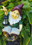 Fanny garden gnome reading a book Royalty Free Stock Image