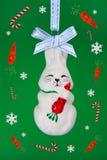 Fanny rabbit witn carrots. Stock Images