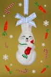 Fanny rabbit witn carrots. Royalty Free Stock Photos
