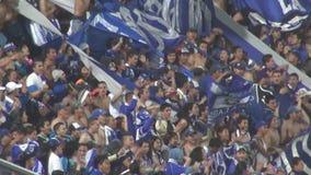 Fans, audiencias, espectadores almacen de metraje de vídeo