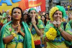 Fans av Brasilien Royaltyfri Fotografi