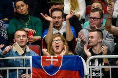 Fans av laget Slovakien, under den FedCup leken mellan Lettland och Slovakien royaltyfri fotografi