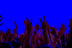 Fans cheering at open air live concert Royalty Free Stock Image