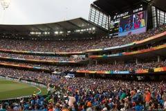 Fans de cricket images libres de droits