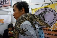 Fans de reptile Image libre de droits
