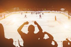 Fans on the hockey match. Back view royalty free stock photography