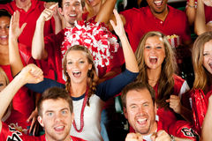 Fans: Team Scores Touchdown Stock Photography