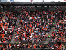 Fans in the upperdeck stand and cheer Stock Photo