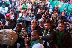 Fans während des Fußballspiel Weltcups Nigeria-Mexiko lizenzfreie stockfotos