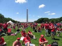 Fans and Washington Monument at the Rally on the National Mall. Photo of enthusiastic washington capitals fans watching a jumbotron at a rally at the national royalty free stock images