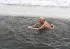 Fans of winter swimming Royalty Free Stock Photos