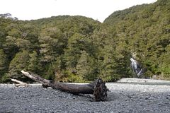 Fantail πτώσεις στο πέρασμα Νέα Ζηλανδία Haast στοκ φωτογραφίες