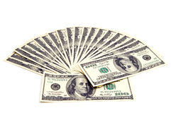 Fantail of dollars Stock Photography