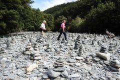 Fantail valt Nieuw Zeeland Stock Foto