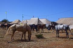 Fantaisie de Morocan Photos stock