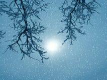 Fantasía del invierno Imagen de archivo