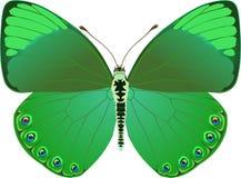 Fantasía verde de la mariposa libre illustration