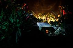 Fantasi dekorerat foto Litet härligt hus i gräs med ljus Gammalt hus i skog på natten med månen Selektivt fokusera royaltyfria foton