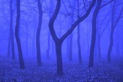 Fantasia blu Fotografia Stock Libera da Diritti