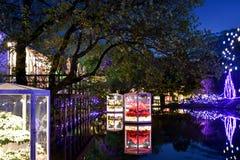 Fantasia 2018 da flor do parque da flor de Ashikaga imagem de stock royalty free