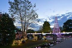Fantasia 2018 da flor do parque da flor de Ashikaga imagens de stock royalty free