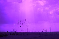 Fantasia del cielo Fotografia Stock