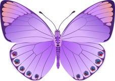 Fantasia del lillà della farfalla Fotografia Stock Libera da Diritti