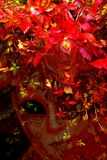 Fantasia di autunno Fotografia Stock Libera da Diritti