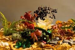 Fantasia di autunno Fotografie Stock Libere da Diritti