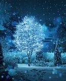 Fantasia illuminata delle precipitazioni nevose del giardino di inverno dell'albero Fotografie Stock