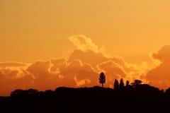 A fantasia nubla-se a paisagem alaranjada Imagem de Stock