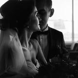 Fantasias da noiva ao ser beijado pelo noivo fotos de stock royalty free