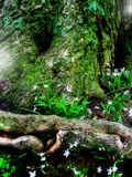 Fantasie-feenhafter Wald Stockfotos