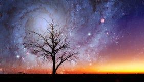 Fantasie vreemd landschap met eenzame boom en melkwegdraaikolk stock afbeeldingen