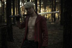 Fantasieheld met een zwaard Stock Fotografie