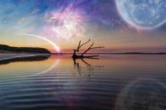 Fantasielandschaft mit Treibholz, enormer Planet im Himmel, Galaxie lizenzfreies stockfoto