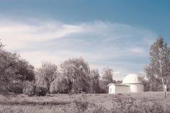 Fantasielandschap met huis en roze hout door blauwe hemel royalty-vrije stock afbeelding