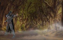Fantasietovenaar in mistig boslandschap stock afbeelding