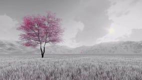 Fantasisakura körsbärsrött träd i blom 4K stock illustrationer