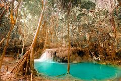Fantasiskrällandelandskap med turkosdammvatten Arkivbilder