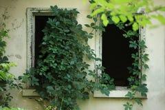 Fantasma abandonado de la casa Imagen de archivo libre de regalías