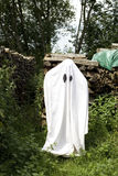 Fantasma blanco Imagen de archivo libre de regalías