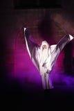 Fantasma del castillo Imágenes de archivo libres de regalías