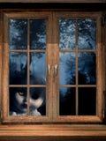 Fantasma della bambola in foresta nebbiosa Fotografia Stock