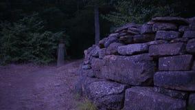 Fantasma di una giovane donna nel fantasma della foresta delle rovine antiche Halloween stock footage